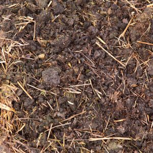 Midlands Compost - manure 300x300
